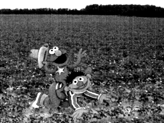File:Elmo riding ernie uncyclopedia.jpg