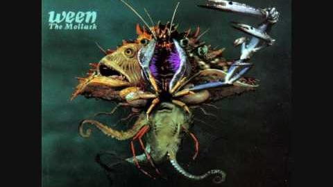 Ocean Man Lyrics