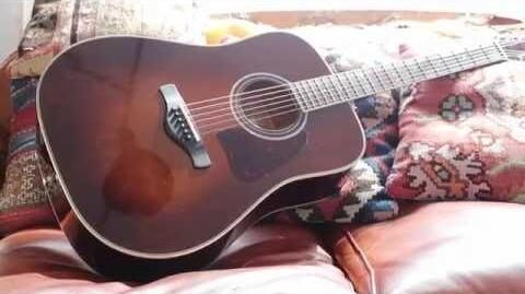 Ibanez Acoustic Artwood Vintage Thermo Aged™ AVD10BVS