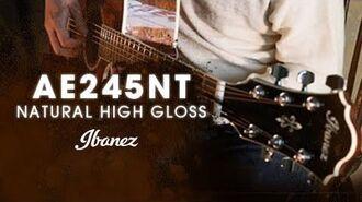 Ibanez Acoustic AE series - AE245NT