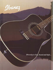 1998 USA acoustics front-cover