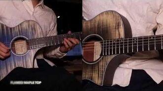 Ibanez Acoustic AEWC Thinline - AEWC32FM