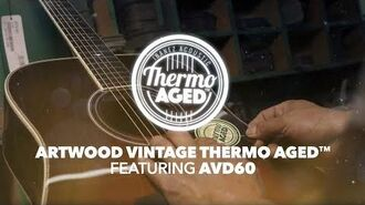 Ibanez Thermo Aged™ Acoustic Guitar - AVD60