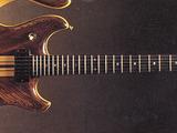 P:1978 Musician guitar models