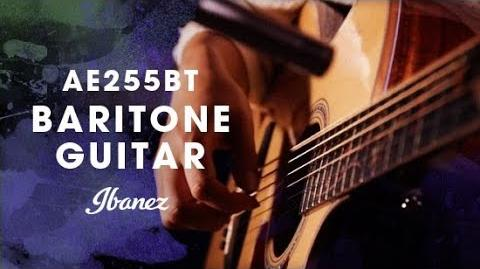 Ibanez AE255BT - Baritone Acoustic Electric Guitar