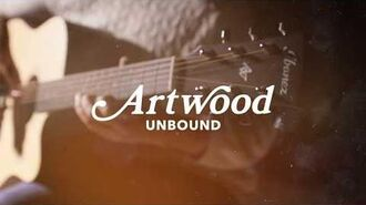 Ibanez Artwood Unbound AW150CE Acoustic Guitar