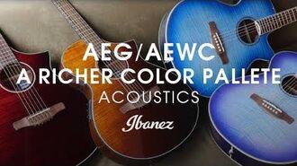 Ibanez Acoustics - A Richer Color Pallete