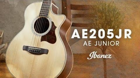 Ibanez Acoustic AE Junior - AE205JR