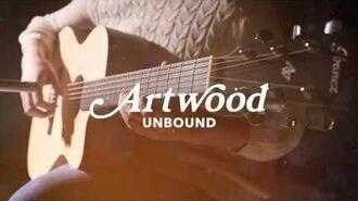 Ibanez Artwood Unbound AC150CE Acoustic Guitar
