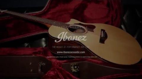 Ibanez AE series
