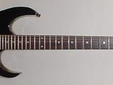 RG220B