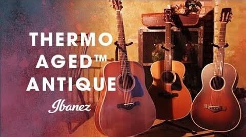 Ibanez Thermo Aged™ Antique Acoustic Guitar - AVD11, AVC11, AVN11