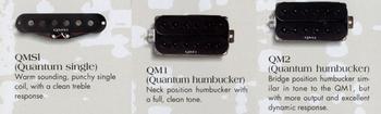 1994 Quantum pickups