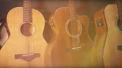 Ibanez Thermo Aged™ Acoustic Electric Guitars (AVD9CE, AVC9CE, AVN9SPE)