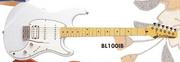 1995 BL100 IB