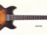 AM50 (1982–1984)