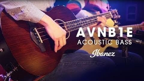 Ibanez AVNB1E - Compact Acoustic Electric Bass