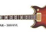 AR300L