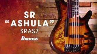 "Ibanez SR ""ASHULA"" featuring Franck Hermanny - 7-string fretted fretless hybrid bass"