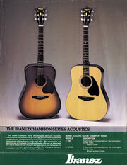 1979 Leaflet front