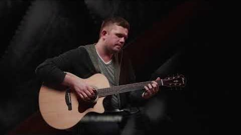 Ibanez Acoustic AE series featuring David Sehling