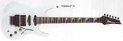 1989 RG685 CP