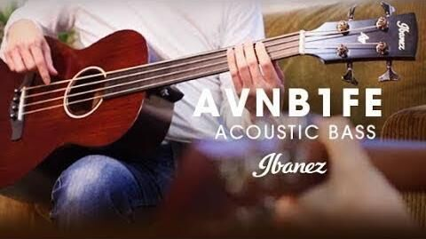 Ibanez AVNB1FE - Compact Acoustic Electric Bass (Fretless)