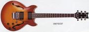 1986 AM75T CS