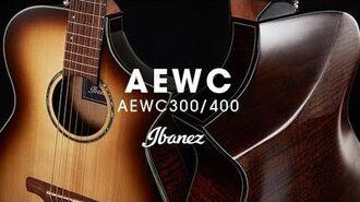 Ibanez Acoustic AEWC300 400
