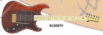 1995 BL300 TV