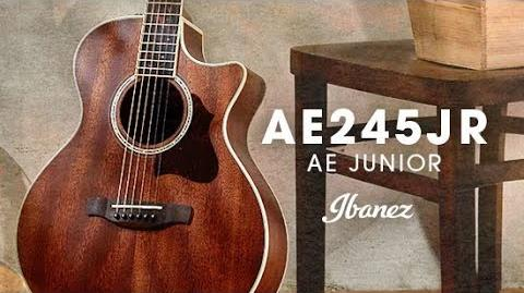 Ibanez Acoustic AE Junior - AE245JR