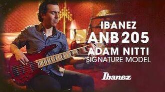 Ibanez ANB205 Electric Bass - Adam Nitti Signature Model