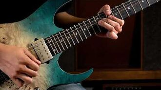 Ibanez RG Premium - RG1121PB RG1120PB Electric Guitar