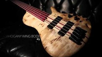 Ibanez Bass workshop SRSC805NTF