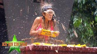 Dschungelcamp 2020 Dschungelprüfung Das große GenÖle