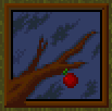 Apple Born of Tree