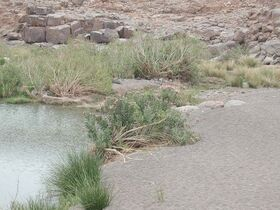 Alik'r oasis