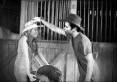 Seddie Hannah Montana Black and White