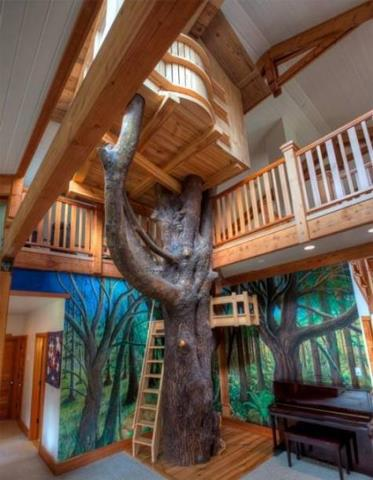 tree house inside beautiful inside tree housejpg image icarly wiki fandom powered by wikia