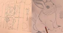Bunny drawings imhl239