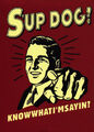 Sup-dog-magnet-c117515921.jpg