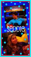 Seddie Photo 15