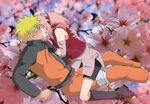 Naruto e Sakura 2