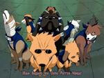 Cani di Kakashi