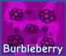 Burbleberry