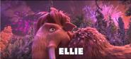 Ellie and Fireworks