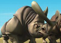 Rhino (6)