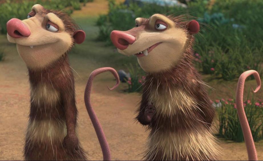 Opossum | Ice Age Wiki | FANDOM powered by Wikia