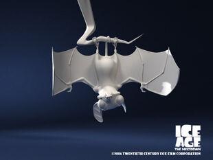 Modeling of bat
