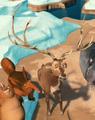 Elk (main).png